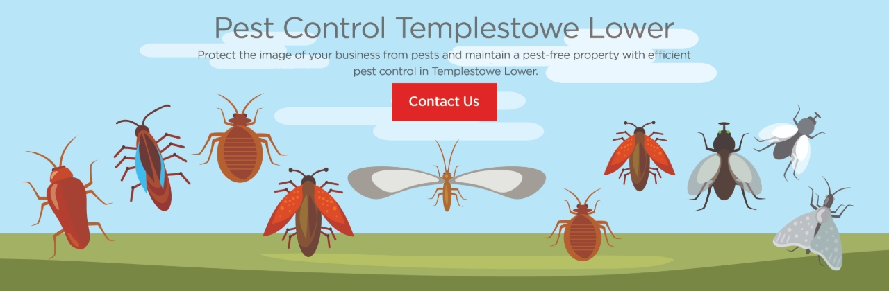 pest control templestowe lower vic 3107