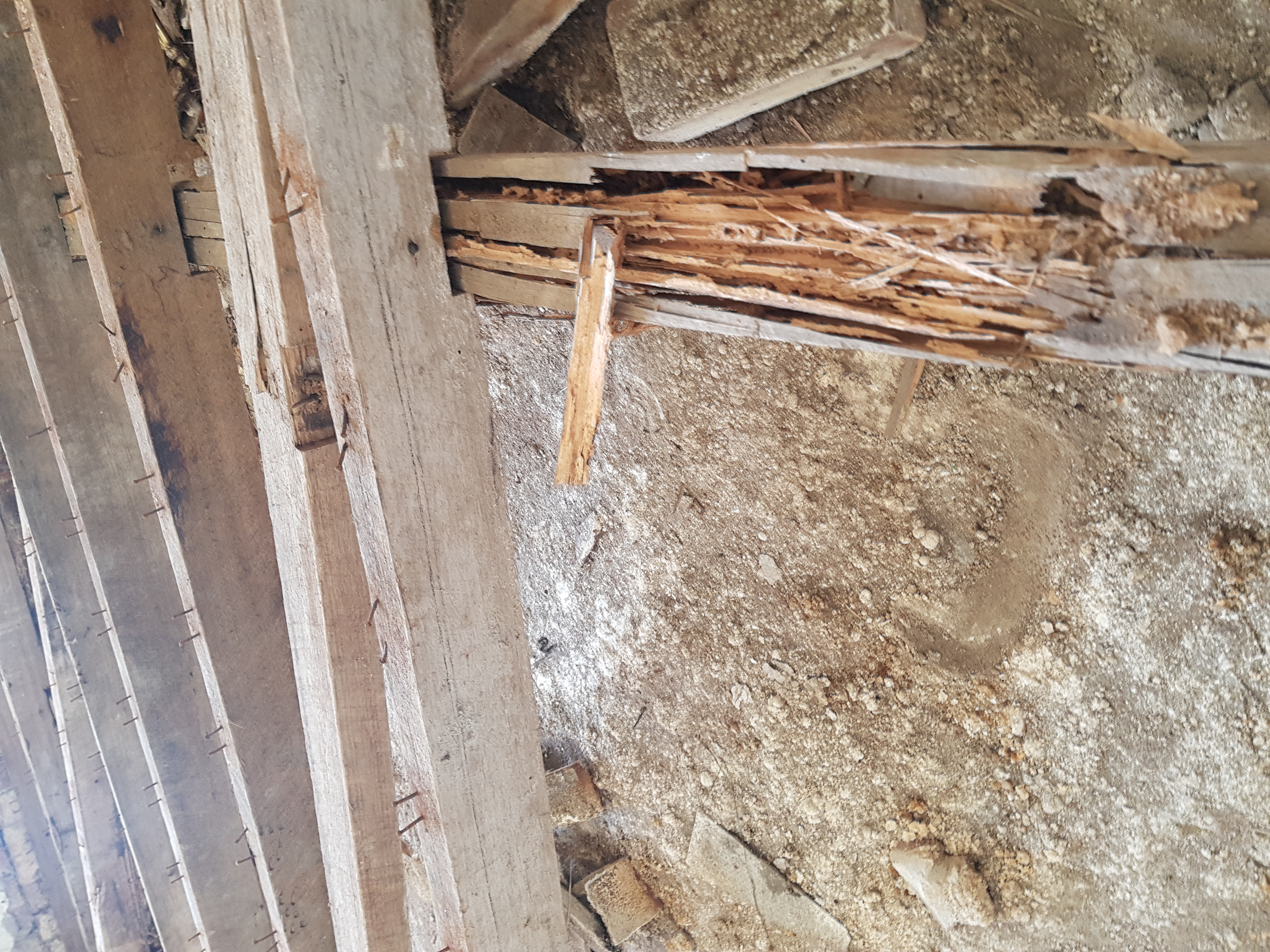 Floor Joists