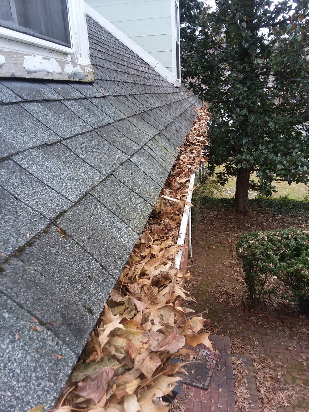 Why You Should Always Clean Your Gutters.