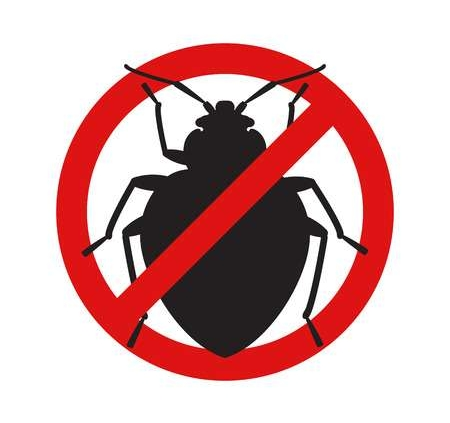 professional bed bugs removal in melbourne